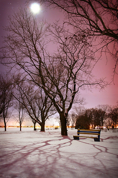 1901311_bellevue_park_by_moonlight_by_tfavrettodnf4nu (466x700, 514Kb)