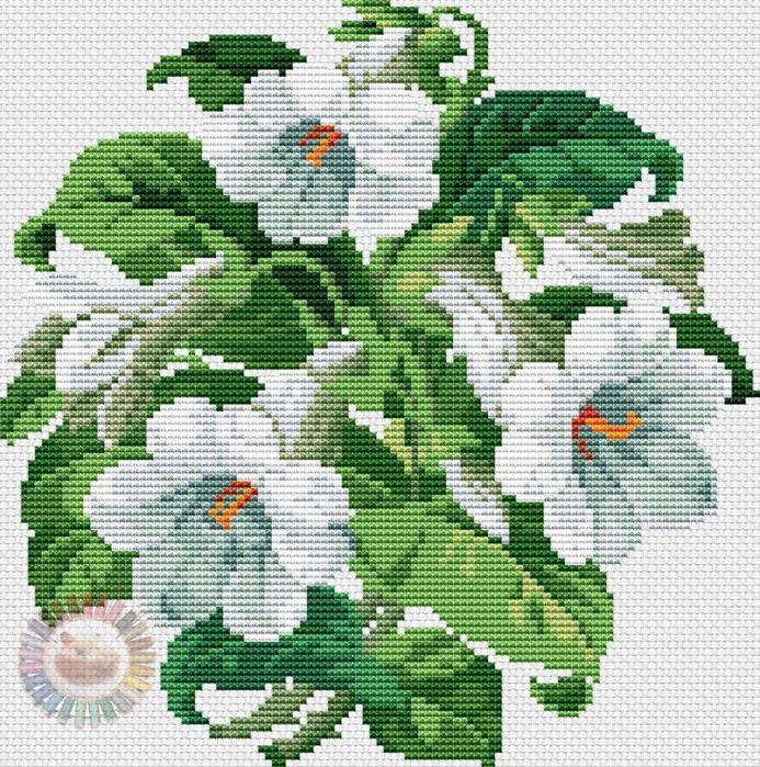 Trumpet Flowers (693x700, 702Kb)