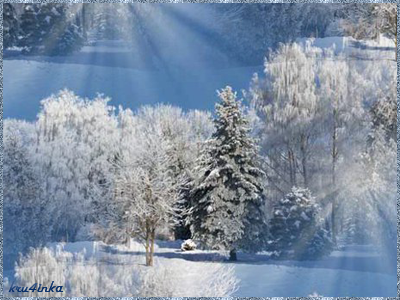 Морозное-утро (400x300, 210Kb)