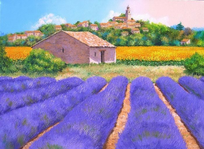 Лавандовые поля Франции. Прованс/3241858_lavanda (700x510, 85Kb)