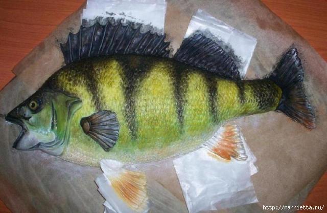 Подарок рыбаку - торт с ОКУНЕМ из мастики (9) (640x416, 131Kb)