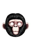 ������ обезьян-1 (373x500, 79Kb)