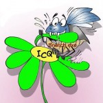 ICQ (150x150, 9Kb)