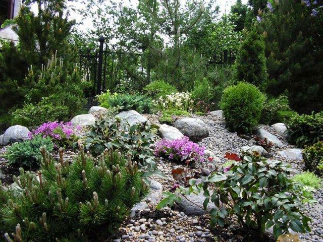 Красивый сад!