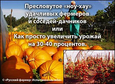 5685748_102104087_5102761_images (393x285, 179Kb)