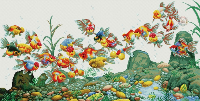 Colorful fish (700x353, 354Kb)