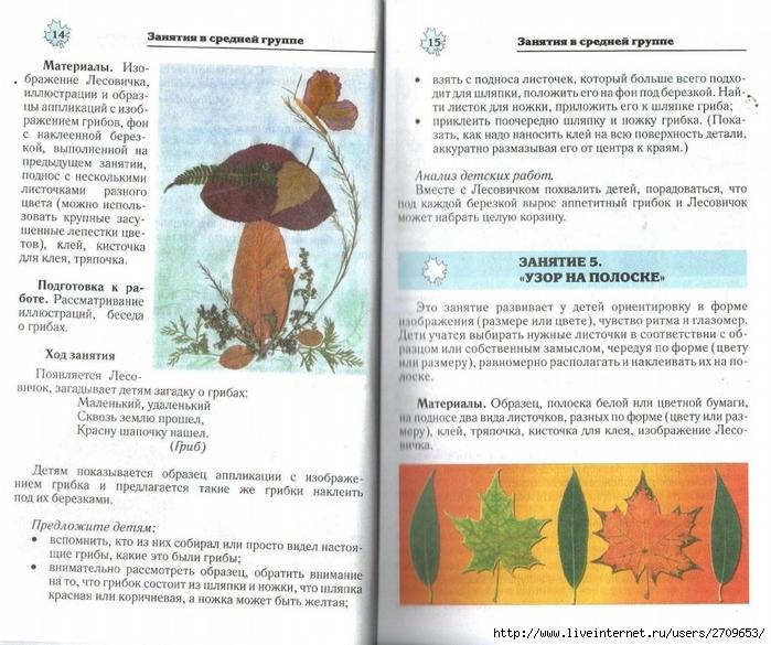 Апликация из природного материала в детском саду.page08 (700x585, 319Kb)