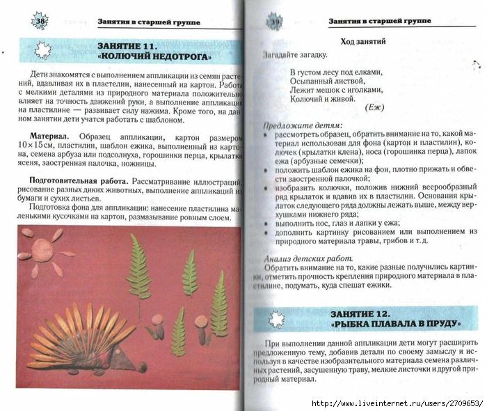 Апликация из природного материала в детском саду.page20 (700x590, 329Kb)