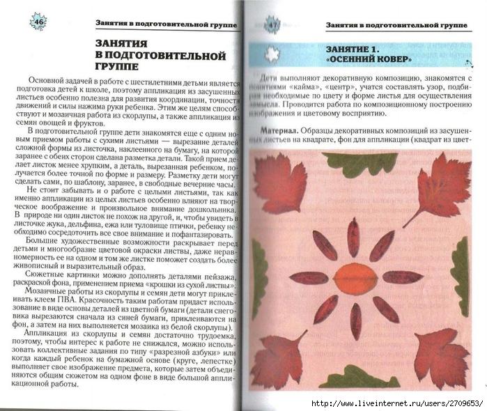 Апликация из природного материала в детском саду.page24 (700x590, 361Kb)