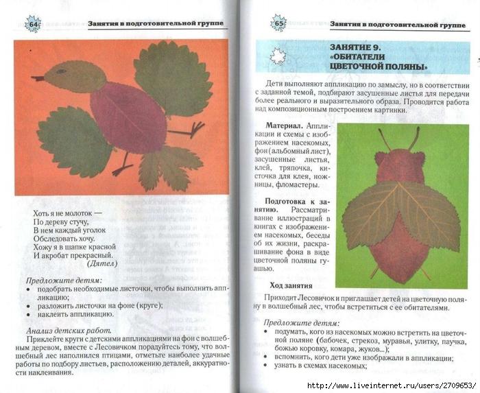 Апликация из природного материала в детском саду.page33 (700x573, 316Kb)