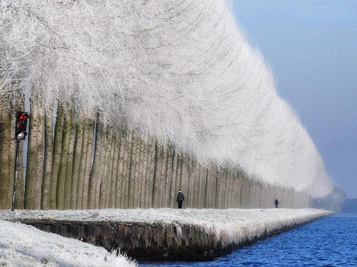 Зимний пейзаж (700x524, 277Kb)