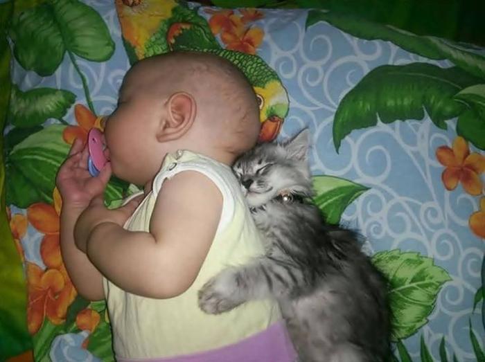 Фото маленькие дети и котята8 (700x523, 296Kb)