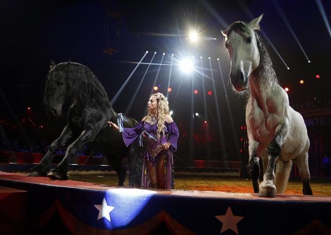 Цирковой фестиваль в Монте-Карло