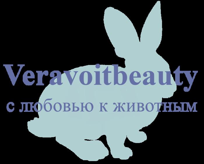 кролик_в блог (700x563, 71Kb)