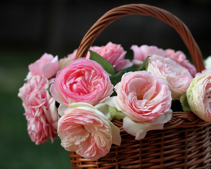 flowers_in_basket_17 (700x559, 96Kb)