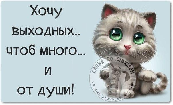 3085196_1422136529_frazki13 (604x365, 40Kb)