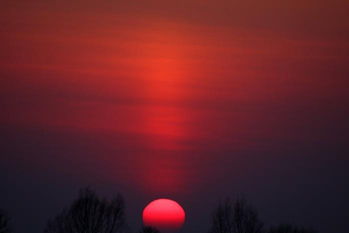 Солнце-садится-между-двумя-деревьями-1240484863_59 (700x466, 34Kb)