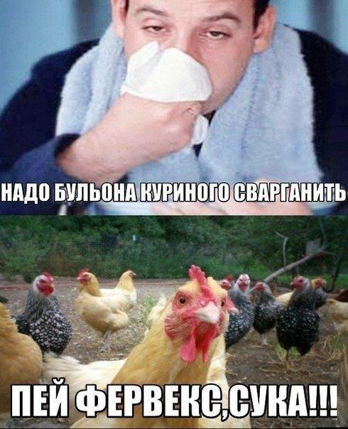 smeshnie_kartinki_142182084199 (490x604, 270Kb)