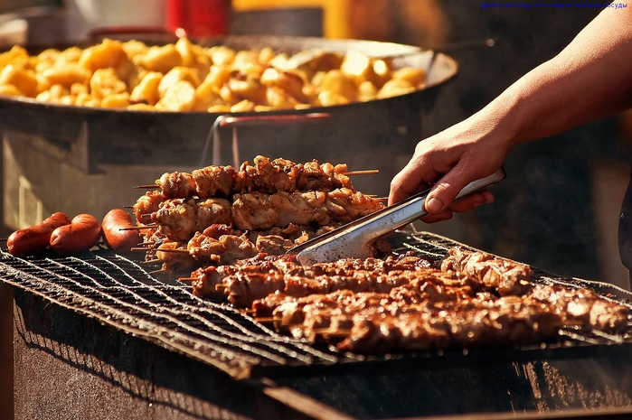 shashlik (700x465, 399Kb)