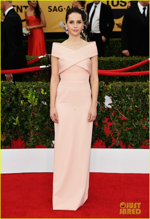 felicity-jones-2015-sag-awards-09 (480x700, 90Kb)