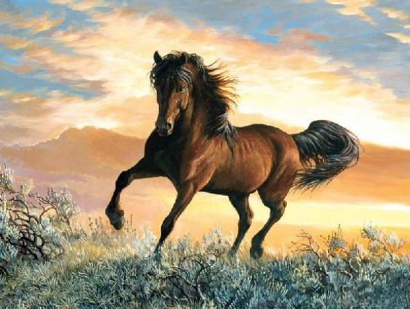Persis animal 15 (590x445, 231Kb)
