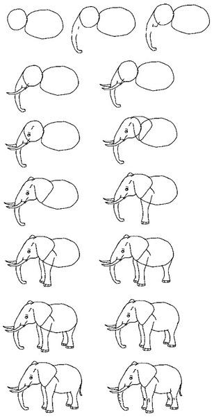 Как нарисовать слона карандашом поэтапно для детей