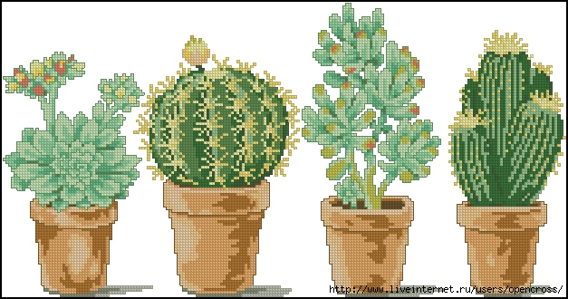 4 Cactuses (627x330, 199Kb)