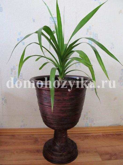 dekor-gorshka_5 (525x700, 288Kb)