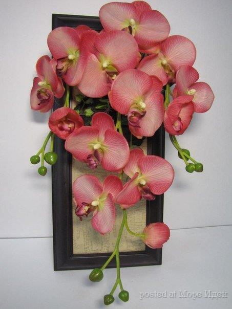 Своими руками из цветов орхидеи 910