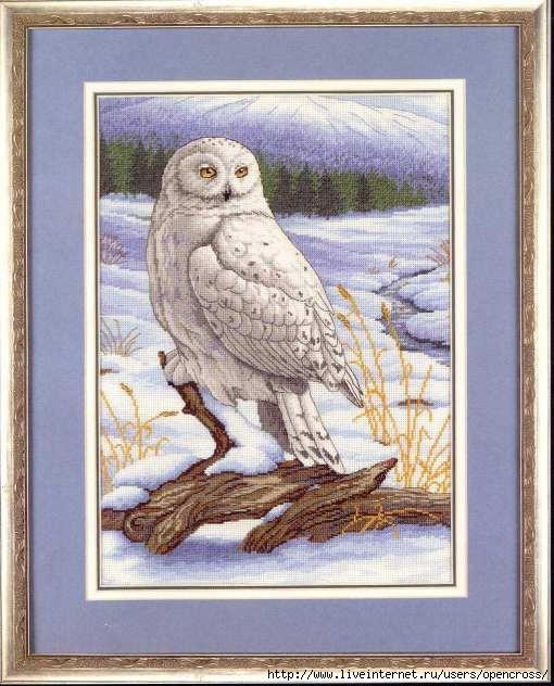 полярная сова (510x632, 183Kb)