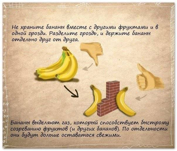 3470549_banani_soveti (604x518, 66Kb)