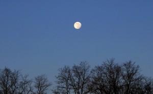 Луна (300x185, 9Kb)