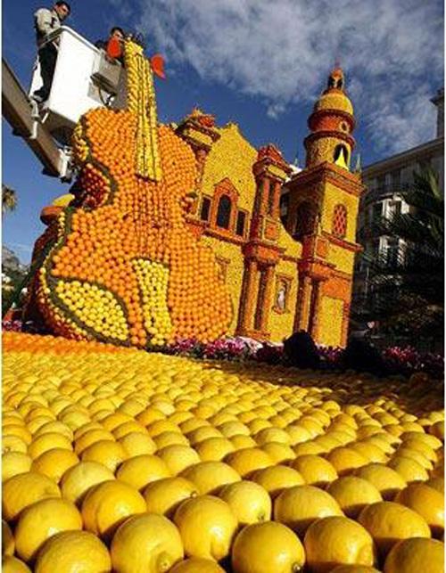 фестиваль лимонов9 (500x643, 395Kb)