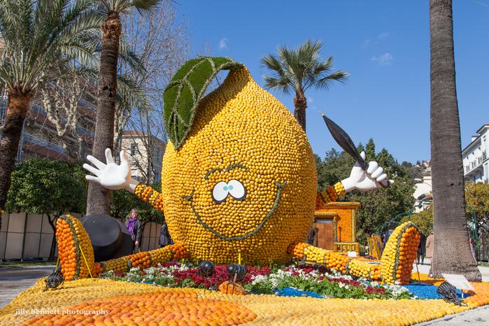 фестиваль лимонов4 (700x466, 607Kb)