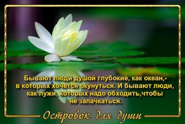 3416556_0OHlNYJXKLFm_1_ (604x406, 55Kb)