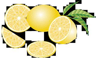 lemon56 (Копировать) (320x195, 86Kb)