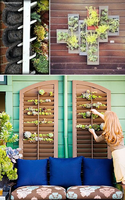 24-Creative-Garden-Container-Ideas-Grow-plants-and-herbs-in-a-shutter-Great-for-small-spaces-or-covering-a-wall-24 (438x700, 404Kb)
