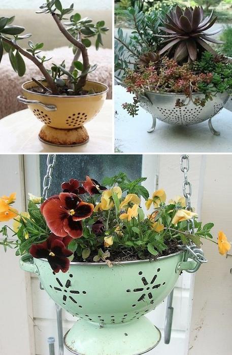 24-Creative-Garden-Container-Ideas-Use-a-colander-as-a-planter-7 (457x700, 353Kb)