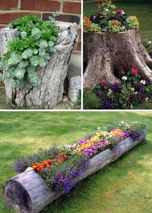 24-Creative-Garden-Container-Ideas-Use-tree-stumps-and-logs-as-planters-8 (501x700, 449Kb)