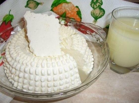 домашний сыр (561x418, 146Kb)