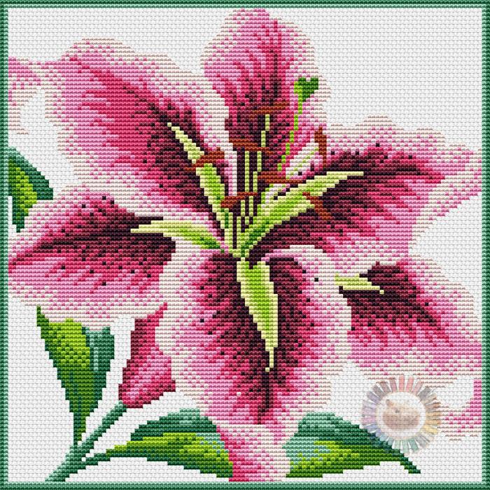 Stargazer Lily (700x700, 814Kb)