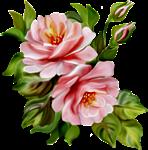 роза9 (148x150, 42Kb)