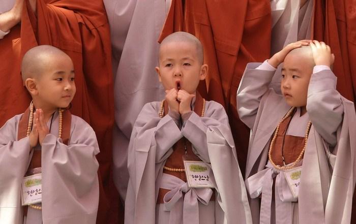 1423667771_tibetskoe_vospitanie_detey (700x441, 68Kb)