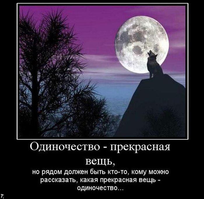 Одиночество - прекрасная вещь./3241858_odin (700x682, 66Kb)