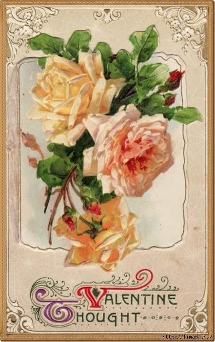 valentine k roses 3 peac (441x700, 252Kb)