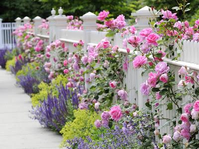 garden inspire (400x300, 173Kb)