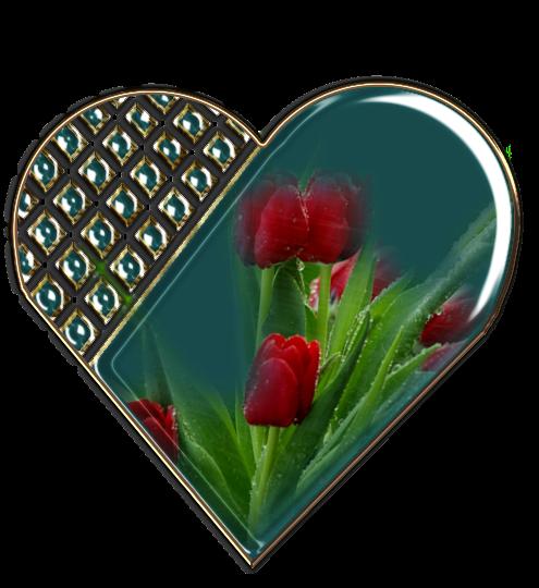 Клипарт. Красивые сердечки в png (5) (495x540, 342Kb)