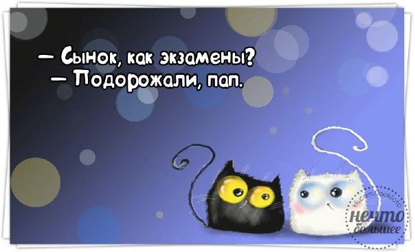 1423679822_frazki-17 (604x367, 139Kb)