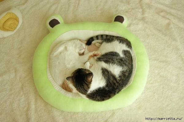 кроватка для кошки (2) (600x400, 116Kb)