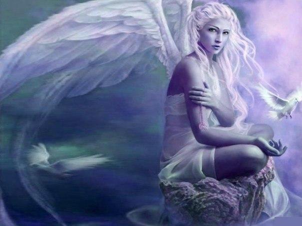 1868538_krilya_angela (604x453, 45Kb)
